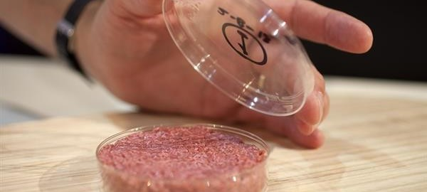 lab-grown-3d-printed-meat-in-stores-next-five-years