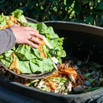 Food-waste-web