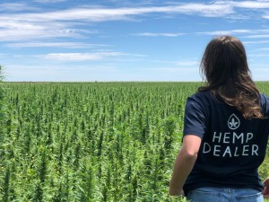 Paddock to Plate, sponsored by Manark Printing, was awarded to Australian Primary Hemp, which makes hemp seeds, hemp oil, hemp balance and hemp boost.