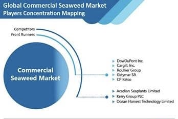 Commercial Seaweed Market